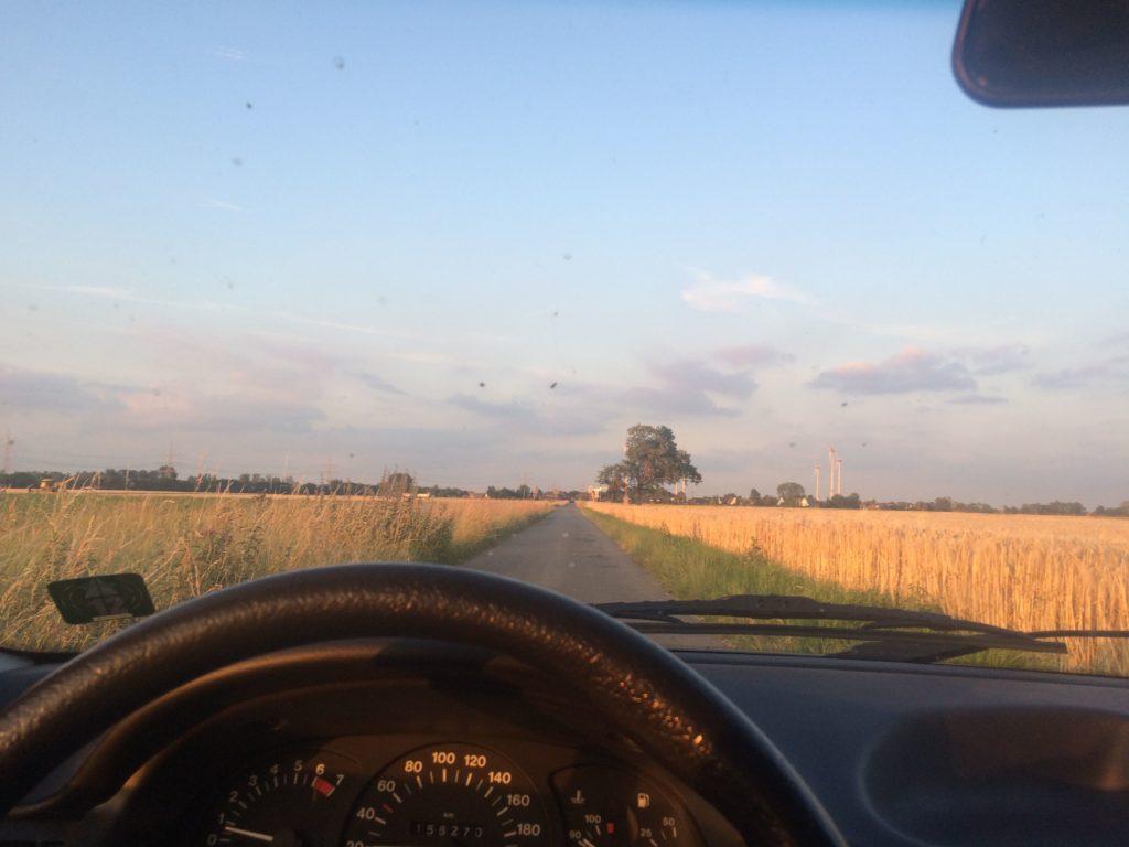 Blick auf Lenkrad und Straße aus der Perspektive des Fahrzeuglenkers