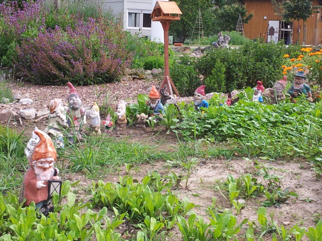 Eine Reihe von Gartenzwergen