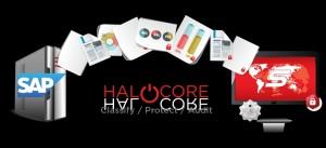 Zeichnung: Schutz von Daten aus SAP-Anwendungen durch Halocore 2.1