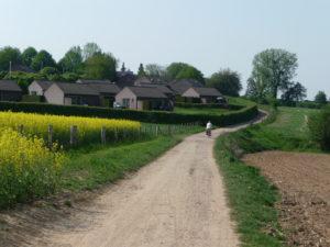 Kleine Straße durch Felder